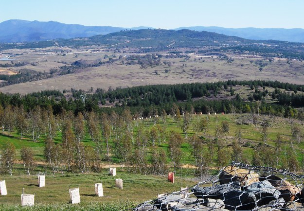 View from the Arboretum over Molonglo to the Brindabella Ranges