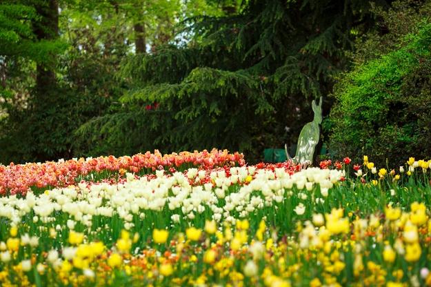 Floriade - image by Floriade