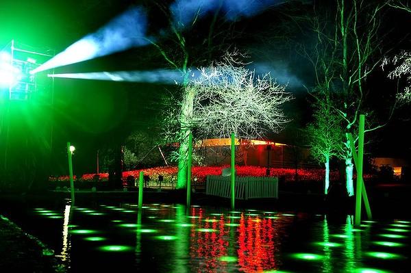 Nightfest 2012