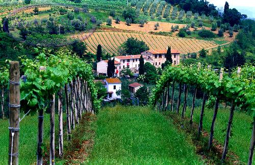 Tuscany - photo fromwww.visitsitaly.cm