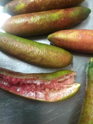 Choku finger limes