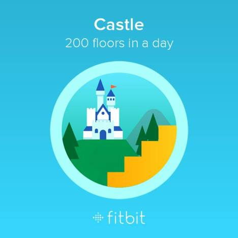 Castle fitbit