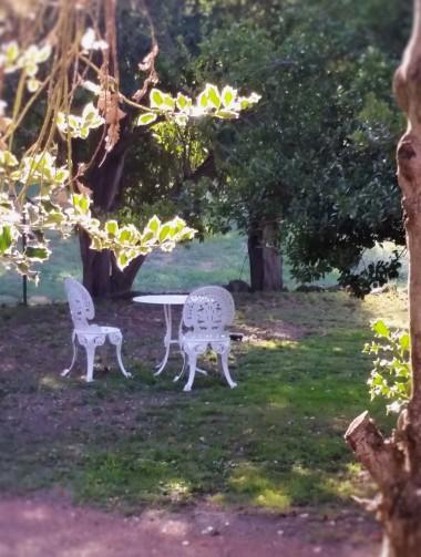 The Garden Wing private garden
