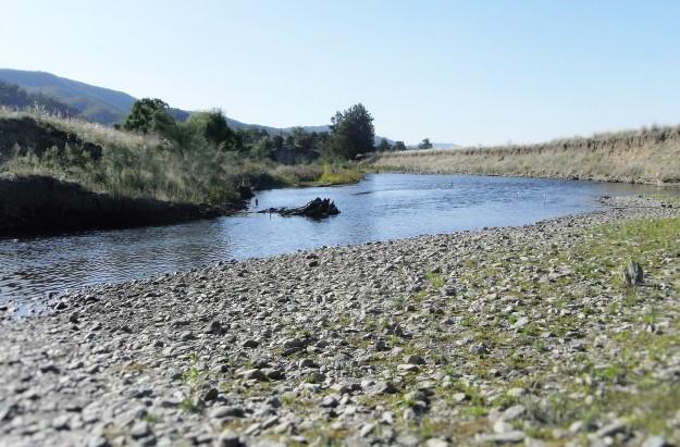 Goodradigbee River just a few metres away
