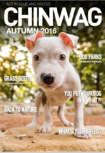 Chinwag 12016 Autumn