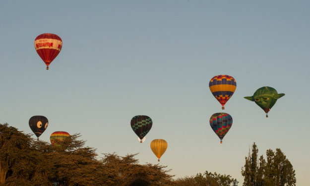 More from Canberra Balloon Spectacular by Martin Ollman