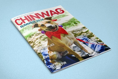 summer-chinwag-cover