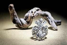 plume ring